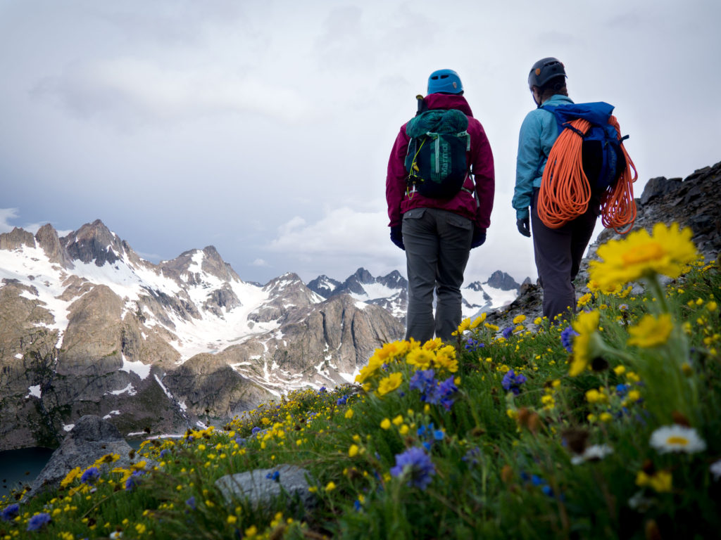 soft skills can get you to look at the wildflowers