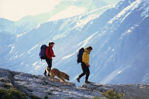 thinkstock_people-with-dog-hiking