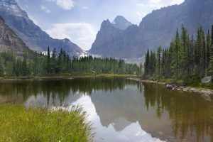 Reflection of mountains and trees in water, Moor Lake, Yoho National Park, British Columbia, Canada